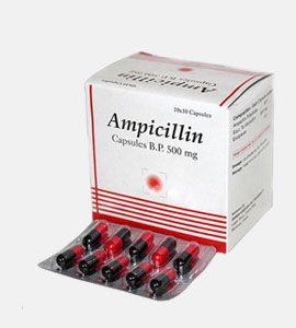 Ampicillin (Penicillin)